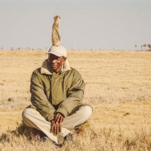 meerkat Unfold Africa Safaris